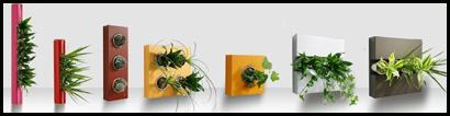 flowerbox-mont