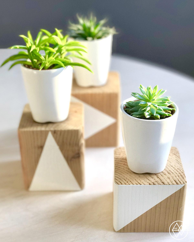 Piedestal-plantes